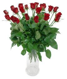 Sivas çiçek gönderme sitemiz güvenlidir  11 adet kimizi gülün ihtisami cam yada mika vazo modeli