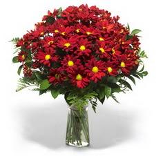Sivas çiçek yolla , çiçek gönder , çiçekçi   Kir çiçekleri cam yada mika vazo içinde