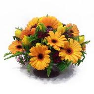 gerbera ve kir çiçek masa aranjmani  Sivas internetten çiçek satışı