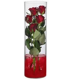 cam içerisinde 7 adet kirmizi gül  Sivas çiçekçi mağazası