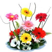 Sivas çiçek satışı  camda gerbera ve mis kokulu kir çiçekleri