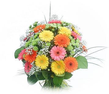 13 adet gerbera çiçegi buketi  Sivas çiçekçiler