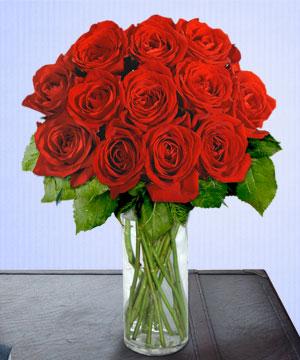Anneme 12 adet cam içerisinde kirmizi gül  Sivas ucuz çiçek gönder