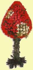 Sivas İnternetten çiçek siparişi  dügün açilis çiçekleri  Sivas 14 şubat sevgililer günü çiçek