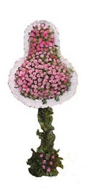 Sivas çiçekçi telefonları  dügün açilis çiçekleri  Sivas çiçek siparişi sitesi