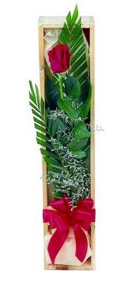 1 adet kutuda kirmizi gül  Sivas online çiçekçi , çiçek siparişi