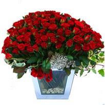 Sivas çiçekçi mağazası   101 adet kirmizi gül aranjmani