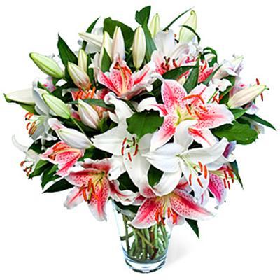 9 adet kazablanka çiçegi vazo içinde