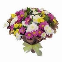 Sivas çiçek gönderme sitemiz güvenlidir  Mevsim kir çiçegi demeti