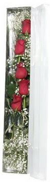 Sivas ucuz çiçek gönder   5 adet gülden kutu güller