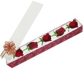 Sivas hediye çiçek yolla  kutu içerisinde 5 adet kirmizi gül