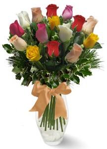 15 adet vazoda renkli gül  Sivas hediye çiçek yolla