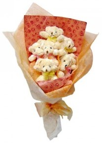 12 adet ayiciktan buket  Sivas ucuz çiçek gönder