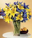 Sivas cicekciler , cicek siparisi  Lilyum ve mevsim  çiçegi özel