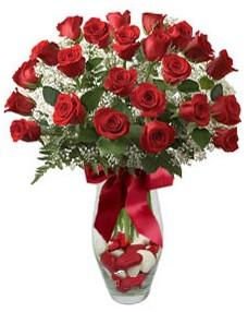 17 adet essiz kalitede kirmizi gül  Sivas hediye sevgilime hediye çiçek