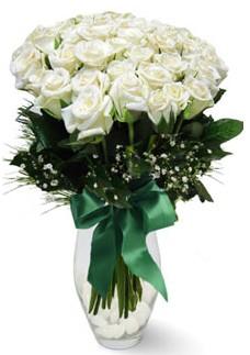 19 adet essiz kalitede beyaz gül  Sivas çiçekçi mağazası