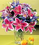 Sivas hediye sevgilime hediye çiçek  Sevgi bahçesi Özel  bir tercih