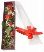 kutu içinde 5 adet kirmizi gül  Sivas çiçek siparişi sitesi