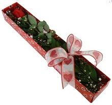 Tek kirmizi gül kutu içerisinde  Sivas çiçek servisi , çiçekçi adresleri