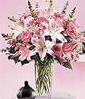Sivas güvenli kaliteli hızlı çiçek  Kazablanka biçme vazoda