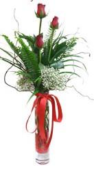 Sivas ucuz çiçek gönder  3 adet kirmizi gül vazo içerisinde