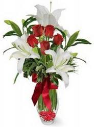 Sivas internetten çiçek satışı  5 adet kirmizi gül ve 3 kandil kazablanka