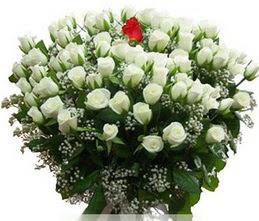 Sivas hediye çiçek yolla  100 adet beyaz 1 adet kirmizi gül buketi