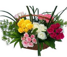 Sivas çiçekçi telefonları  35 adet rengarenk güllerden sepet tanzimi