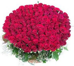 Sivas kaliteli taze ve ucuz çiçekler  100 adet kırmızı gülden görsel buket