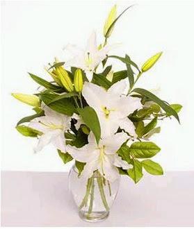 Sivas İnternetten çiçek siparişi  2 dal cazablanca vazo çiçeği