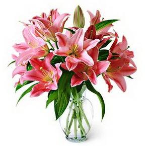 3 dal kazablanka görsel vazosu  Sivas çiçek siparişi sitesi
