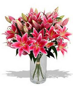 4 dal cazablanca görsel vazosu  Sivas çiçek , çiçekçi , çiçekçilik