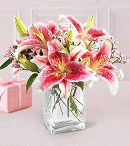 2 dal kazablanka görsel vazosu  Sivas ucuz çiçek gönder