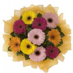 Sivas yurtiçi ve yurtdışı çiçek siparişi  11 adet karışık gerbera çiçeği buketi