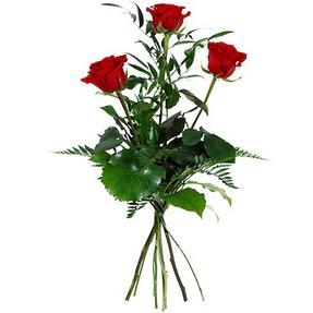 Sivas online çiçek gönderme sipariş  3 adet kırmızı gülden buket