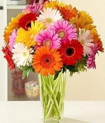 Sivas anneler günü çiçek yolla  15 adet gerbera çiçek vazosu