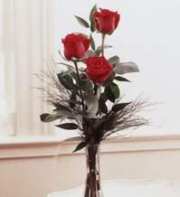 Sivas hediye çiçek yolla  Vazoda 3 adet güzel gül