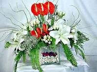 Sivas hediye sevgilime hediye çiçek  Anthurim Kazablanka  gül