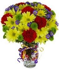 En güzel hediye karışık mevsim çiçeği  Sivas çiçek satışı