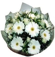 Eşime sevgilime en güzel hediye  Sivas uluslararası çiçek gönderme