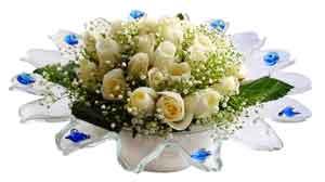 Sivas 14 şubat sevgililer günü çiçek  11 adet Beyaz güller özel cam tanzim