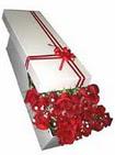 Sivas çiçek gönderme sitemiz güvenlidir  11 adet 1.kalite magnum güller
