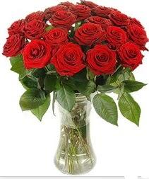 Sivas hediye sevgilime hediye çiçek  Vazoda 15 adet kırmızı gül tanzimi