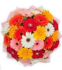 15 adet renkli gerbera buketi  Sivas çiçek mağazası , çiçekçi adresleri