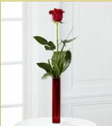 Vazo içerisinde 1 adet kırmızı gül  Sivas çiçek siparişi sitesi