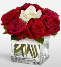 Tek aşkımsın çiçeği 8 kırmızı 1 beyaz gül  Sivas online çiçek gönderme sipariş