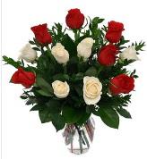 Vazo içerisinde 6 kırmızı 6 beyaz gül  Sivas çiçek satışı