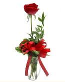 vazo içerisinde 1 adet kırmızı gül  Sivas çiçek gönderme sitemiz güvenlidir