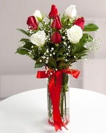 5 kırmızı 4 beyaz gül vazoda  Sivas çiçek siparişi vermek