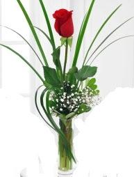 Cam içerisinde 1 kırmızı gül  Sivas online çiçekçi , çiçek siparişi